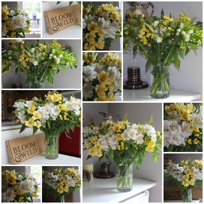 Bloom & Wild Collage 2