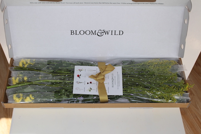 Bloom & Willd 09