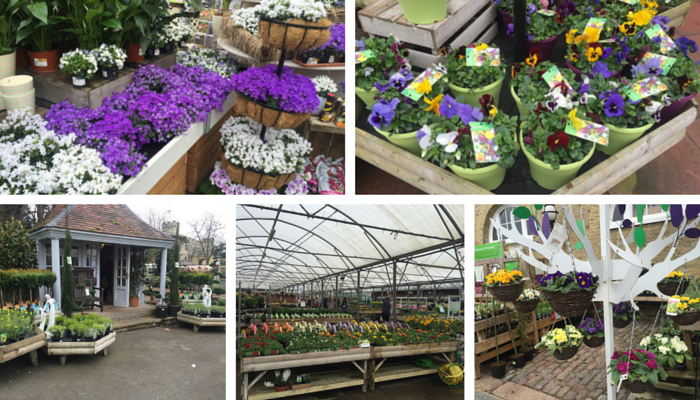 Wyevale Garden Centre collage 5