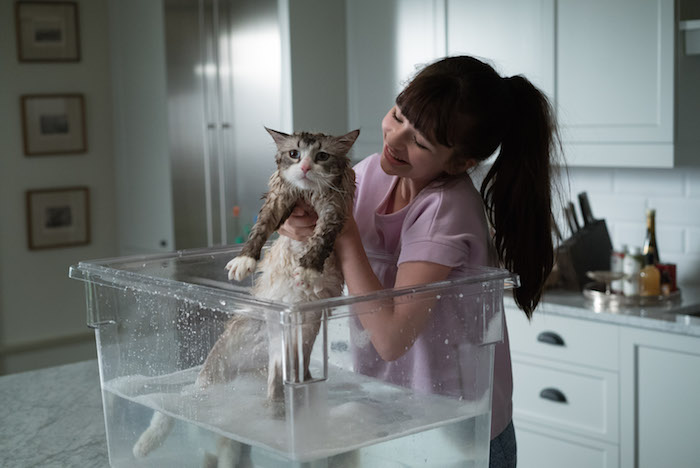 "M33 Melina Weissman and Mr. Fuzzypants star in EuropaCorp's ""NINE LIVES"". Photo Credit: Takashi Seida © 2016 EuropaCorp."