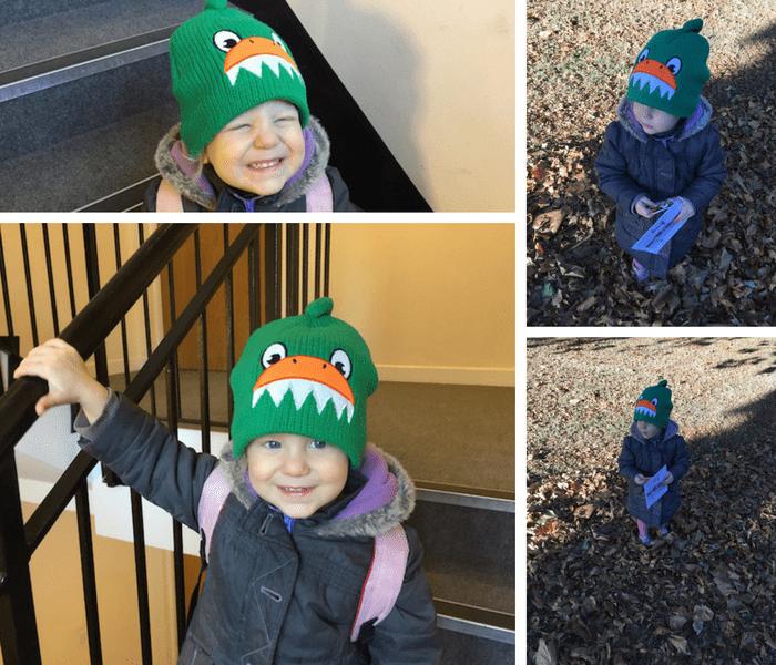 animal-hat