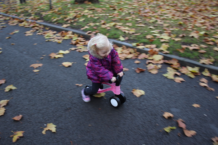 toddlebike2-photo-1
