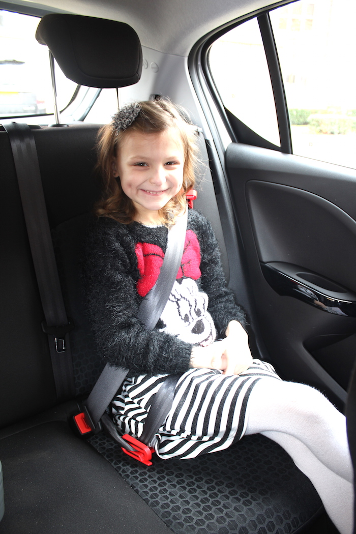 Bella in the car on a mifold 2