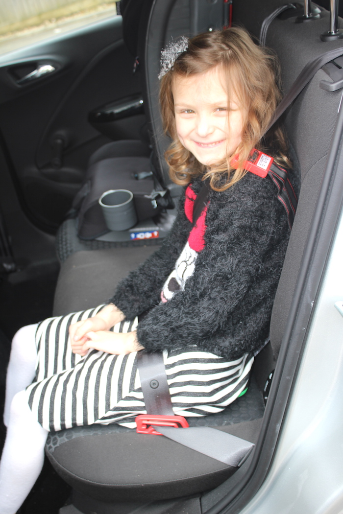 Bella in the car on a mifold
