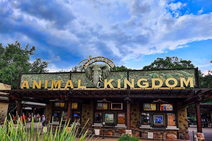 Natural Environment In Orlando Theme Parks