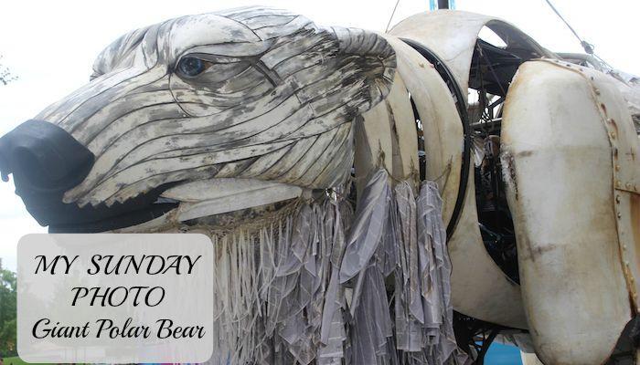 My Sunday Photo – Giant Polar Bear