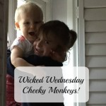 Wicked Wednesday – Cheeky Monkeys!