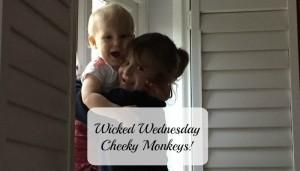 Wicked Wednesday – Cheeky Monkeys!
