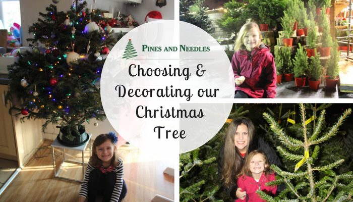 Choosing & Decorating our Pines and Needles Christmas Tree