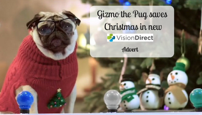 Gizmo the Pug Saves Christmas in New Vision Direct Advert