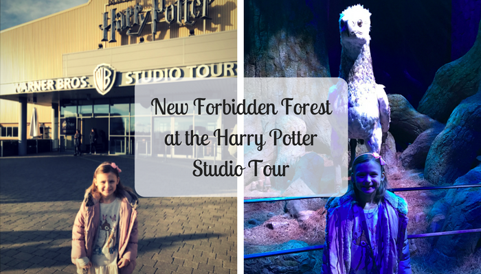 New Forbidden Forest at the Harry Potter Studio Tour