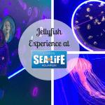Jellyfish Experience at Sealife Aquarium London