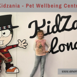 Back to Kidzania: Pet Wellbeing Centre Review