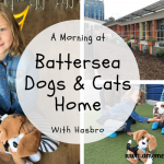 A Morning At Battersea Dogs & Cats Home With Hasbro