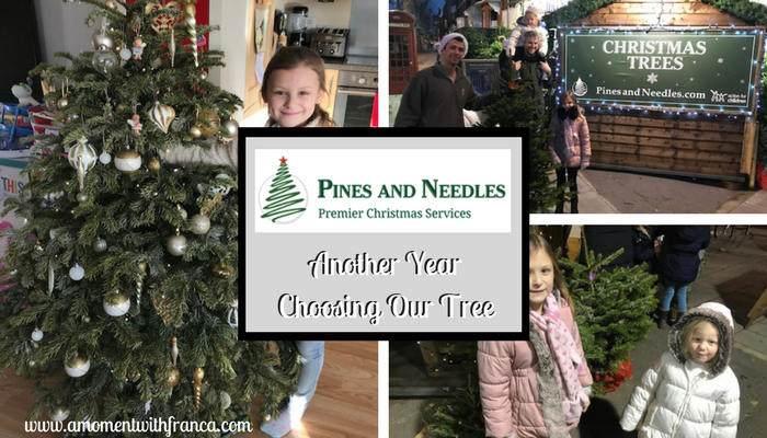 Pines And Needles – Another Year Choosing Our Tree