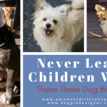 Never Leave Children With These Three Dog Breeds