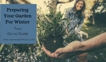 Preparing Your Garden For Winter – Your Go-to Guide