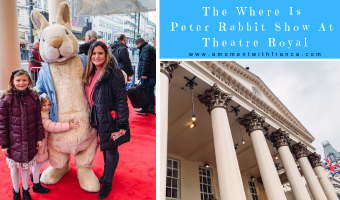 The Where Is Peter Rabbit Show At Theatre Royal