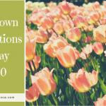 Lockdown Celebrations In May 2020