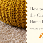 How to Clean the Carpet at Home Easily?