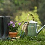 Some Garden Ideas for Spring Lockdown